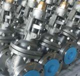 鋳造物鋼鉄API 600ゲート弁