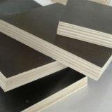 Konkretes Verschalung-Furnierholz mit bestem Preis