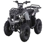 4000W Electric (nieuwe) Vierling ATV