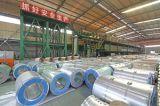Bobine d'acciaio preverniciate Finished delle azione PPGI nella qualità principale e secondaria