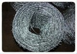 Galvanized Barbed Wire (BWG12*14, BWG16*16)