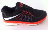 Le sport neuf de qualité chausse des chaussures de chaussures de course