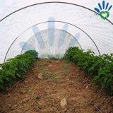 Tela não tecida de 100% PP Spunbonded com o UV para a agricultura como esteira do controle de Weed, anti pano de grama etc., tampa da árvore/Nonwoven do preto