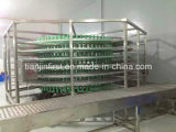 Edelstahl Bread Cooling System mit Cer Bread Production Line
