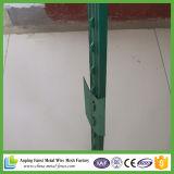 Green Painted T Post para o mercado americano