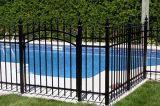 Forti reti fisse nere del ferro del giardino con il cancello
