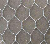 Treillis métallique hexagonal (Gabion-50)