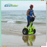 2 72V Samsungのリチウム電池2の車輪の電気計量器のスクーター、電気バイク
