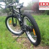 Bici di montagna con la batteria di litio per la bicicletta elettrica maschio