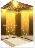L'ascenseur de levage de passager de Fujizy avec le miroir a repéré l'acier inoxydable