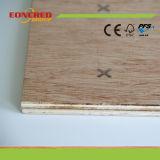 O fabricante todo de Shandong Linyi faz sob medida a madeira compensada comercial da mobília da madeira compensada