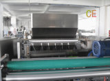 Körnchen Doppeltes-Film Four-Side Sealing und Multi-Line Packing Machine
