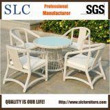 Удобная алюминиевая напольная мебель ротанга сада (SC-B8959)