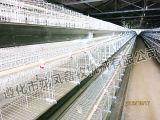 Große Kapazität des Schicht-Huhn-Rahmens mit ISO9001