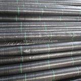 Tissu tissé par pp noir de la couverture 90GSM au sol