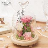 Fiori creativi di Ivenran per il regalo di compleanno di giorno del biglietto di S. Valentino della decorazione di festa