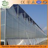 Hoja de policarbonato / Placa de PC de plástico Prefab Greenhouse
