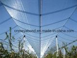 L'HDPE ha lavorato a maglia le anti reti della grandine/la rete protezione della grandine per l'albero da frutto