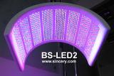 도매 중국 제조 직매 LED 미장원 피부 관리를 위한 가벼운 치료 기계
