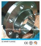 ステンレス鋼の造られた溶接または溶接の首の (WN)フランジ