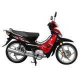 Welp Jc110-19s van de Motorfiets van Jincheng de Model