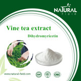 HPLCのツルの茶エキスのプラントエキスによる50% Dihydromyricetinの粉