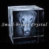 Cubo de la ballena del laser del cristal 3D (ND11087)