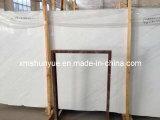 Grey/White/Black Wooden Marble para Flooring Tile, Slab