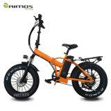 محرك مزدوجة [هي بوور] يطوي درّاجة كهربائيّة لأنّ رجل مع [250و-1000و] ترس محرك