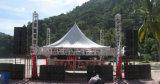 Haoyang AudioVt4880 verdoppeln 18inch grosse Subwoofer Zeile Reihe