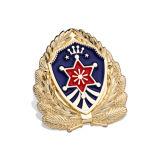 Круглый значок эмали, штемпелюет специальный значок логоса (GZHY-FFL-013)