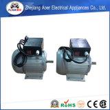 Вращающий момент одиночной фазы асинхронный высокий мотор шестерни AC 110 вольтов