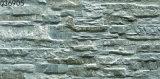 3Dセメント(300X600mm)が付いている陶磁器の外部の石塀のタイル