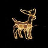 Flexibele 5050 de Verlichting van mutil-Kleur LEIDENE Kerstmis van het Koord
