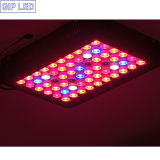 Professionele 5W LEDs 300W LED Grow Light voor Medical Plants Vegetables