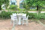 Insieme di vimini della Tabella della barra del giardino esterno del rattan