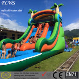 Design modificado para requisitos particulares Water Park Adult y Kid Inflatable Pool con Slide