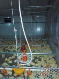 Câbles d'alimentation et buveurs automatiques de volaille pour la cloche de poulet