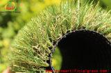 Natura di autunno del tetto dell'erba che osserva il tappeto erboso del monofilamento