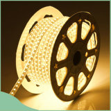 Einzelnes Color CER RoHS 110V 220V SMD 5050 Waterproof LED Strip Light