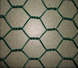 Elettro Galvanized Hexagonal Wire Netting per Poultry Farms e Bird Cages con lo SGS