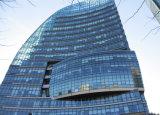 Pareti divisorie di vetro strutturali di disegno moderno