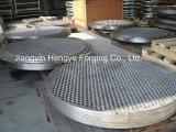 Hoja de tubo forjada caliente del acero inoxidable 316L