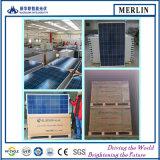 310W 320W 단청 태양 전지판