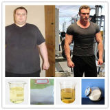 Forma fisica di salute del corpo del proponiato del testoterone per il Bodybuilder CAS 57-85-2