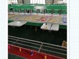 De hoge Machine van het Borduurwerk van Pricision Chenille met Prijzen voor het Werken