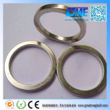 Magnetics Rare Earth Strong Permanent Neodymium NdFeB Magnet da vendere