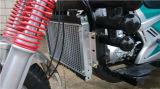 250cc Water Cooling Petrol Three Wheel New Cargo Motorcycle