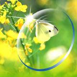 [يوولي] 1.60 [مر8] [همك] [إمي] طلية خضراء بصريّة راتينج عدسة