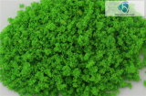 Feines Tree Powder für Landscaping Other Building Material